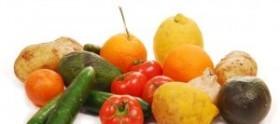 Terapia Dietética